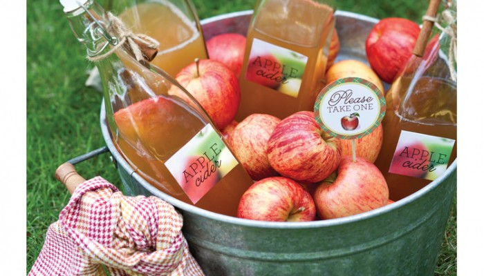 Apple cider for the fall