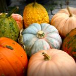 Fall Entertaining Etiquette | Everything's Coming Up Pumpkins